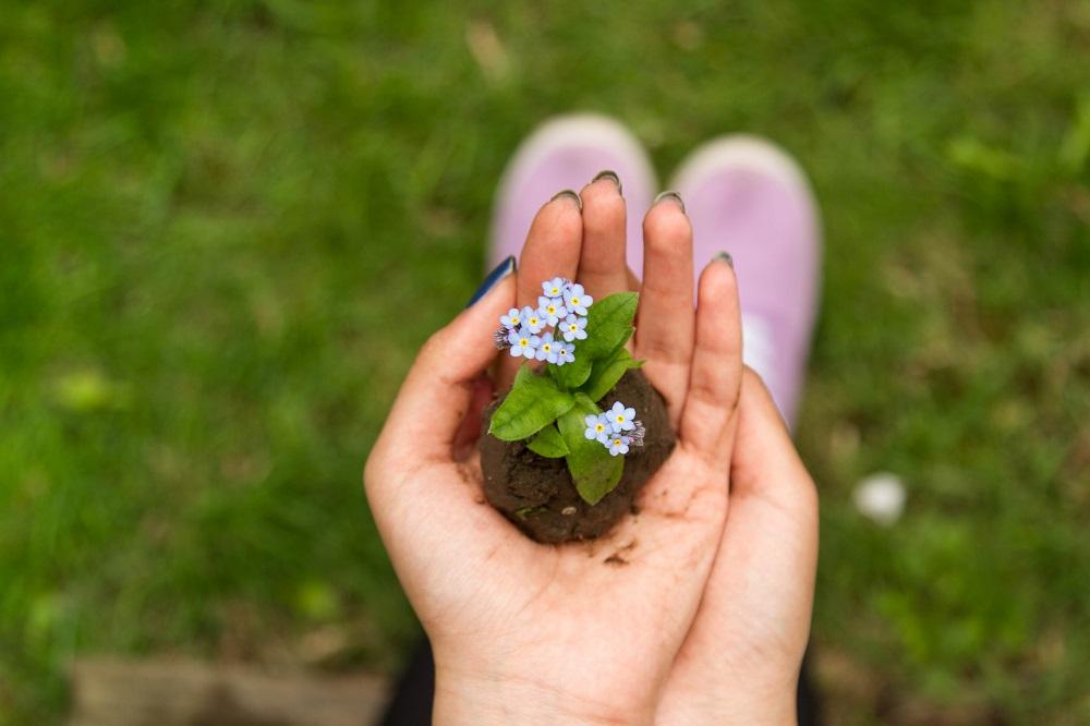 giardino in mano salentodolcevita