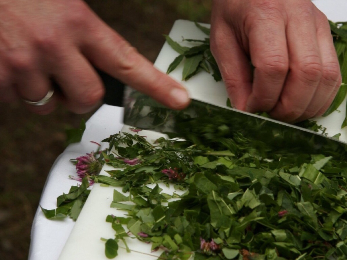 corsi di cucina salentina - salentodolcevita