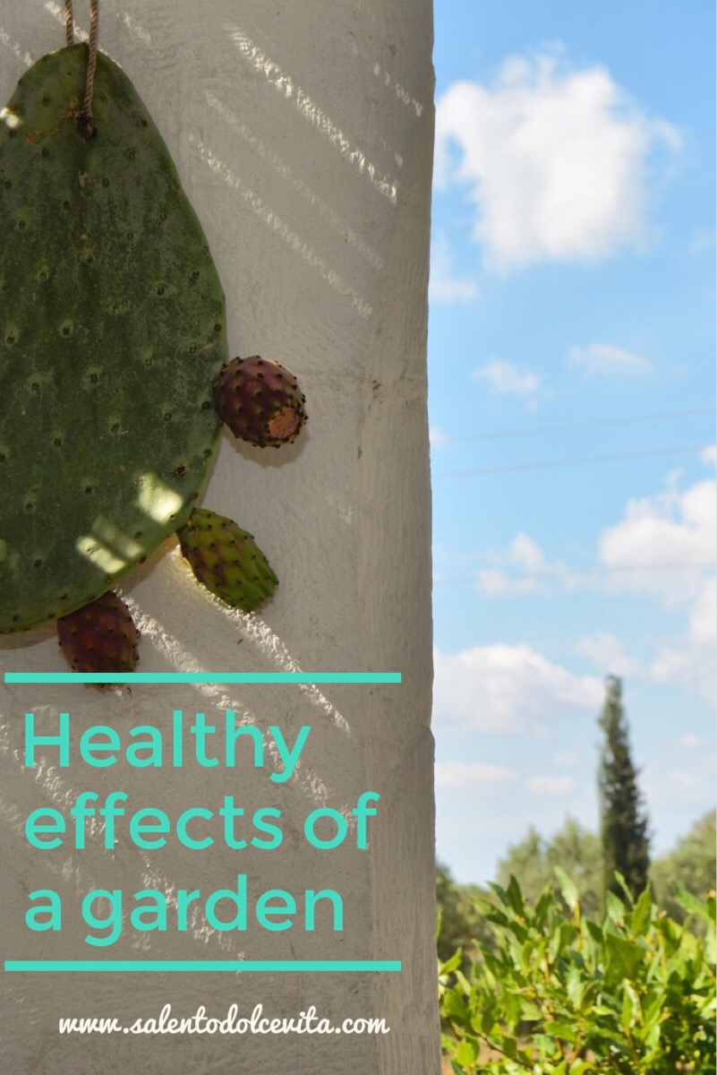 healthy effects a garden - www.salentodolcevita.com
