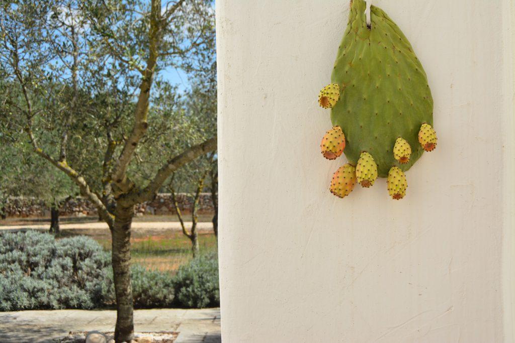 Casa Alea, cortile - Castro - booking@salentodolcevita.com