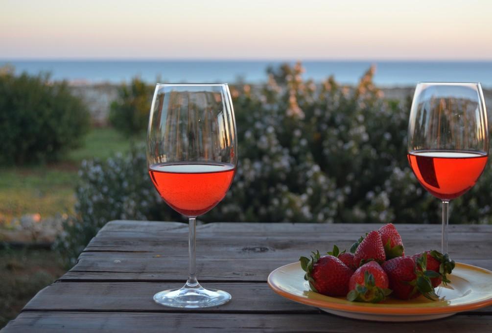 degustazione vino salento