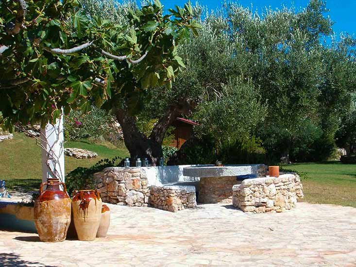 unch in the shade of ancient olive tree