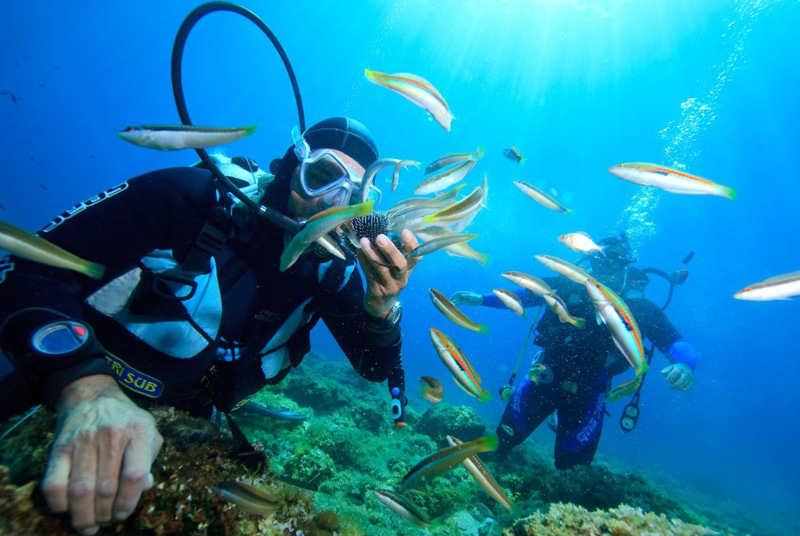 guided scuba diving